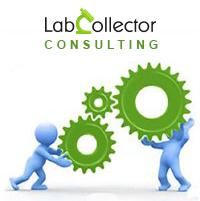 Consulting - Lab Configuration