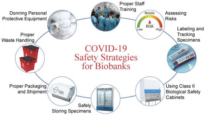 Safety Strategies for Biobanks